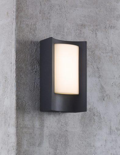 Außenlampe-schwarz-2140ZW-4