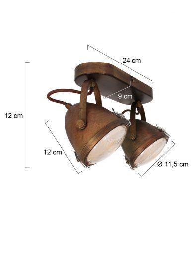 Deckenlampe-mit-2-Spots-1312B-5