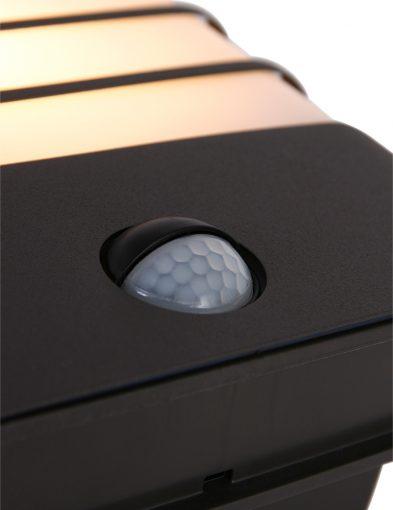 Moderne-Außenlampe-von-Philips-Waschbär-Schwarz-1466A-1