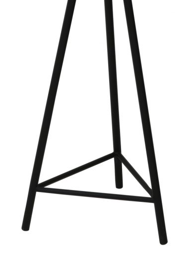 Schwarze-Stativ-Stehlampe-mit-Drahtabdeckung-2091ZW-2