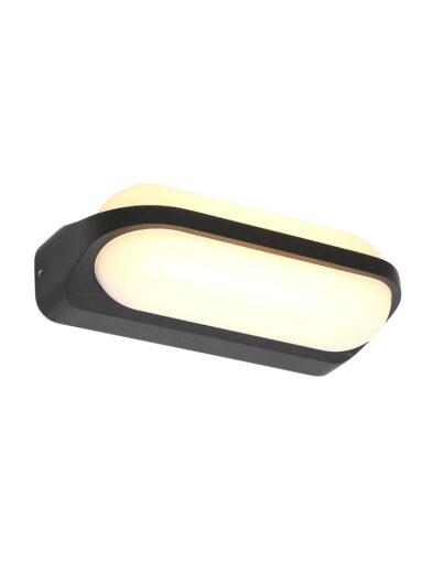Außenwandleuchte LED schwarz-2715ZW