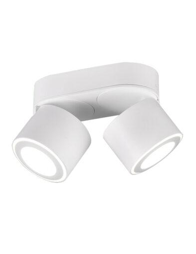 Doppelter Deckenspot verstellbar weiß-3168W
