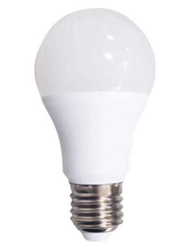 LED Lampe E27 9
